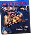 【BOOKS】Sand to Sea: Marine Life of Hawaii by Stephanie Feeney/書籍・新聞雑誌/海外版/幼児・子供