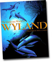 【BOOKS】The Undersea World of Wyland introduction by Sylvia A. Earle/書籍・新聞雑誌/海外版/幼児・子供