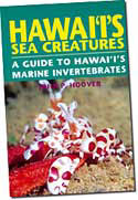【BOOKS】Hawaii s Sea Creatures by John Hoover/書籍・新聞雑誌/海外版/幼児・子供