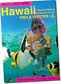 【BOOKS】Reef Watchers  Hawaii Fish Critter I.D. by Astrid Witte  and Casey Mahaney/書籍・新聞雑誌/海外版/幼児・子供