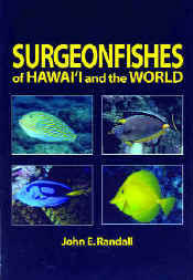 【BOOKS】Surgeonfishes  of Hawai i and the World by John E. Randal/書籍・新聞雑誌/海外版/幼児・子供