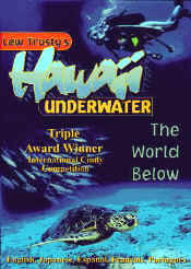 【DVD】Lew Trusty s  Hawaii Underwater The World Below/音楽・楽器・映像/ビデオ・DVD/ドキュメンタリー