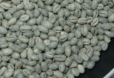 KONA COFFEE 100% GREEN BEEN PEABERY(Order 10 LB each)/ドリンク・飲料品/コナコーヒー/生豆100%コナ