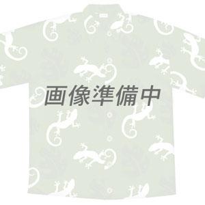 ハワイのアロハシャツ・Tシャツ/Tシャツ・カジュアル/ベルト/ゲスベルト